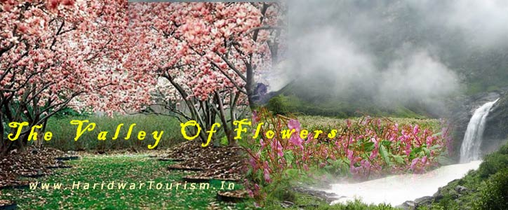 How To Reach - Valley of Flowers